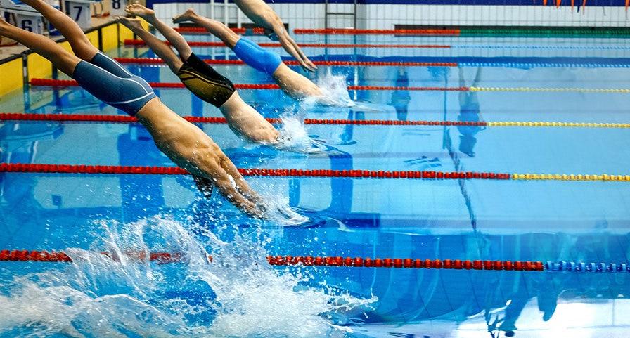 Nageurs au départ d'une course de natation